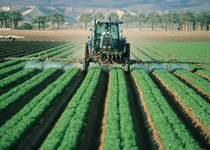 Typy rolnictwa - jak dużo ich jest?