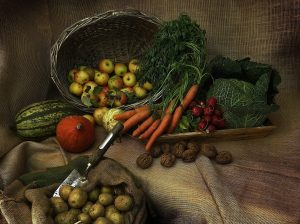 Zbiór warzyw - w którym momencie?