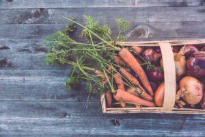 Zbiór warzyw - kiedy odpowiedni termin?